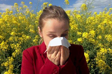 Sofre de alergias? Saiba que cuidados deve ter no seu carro!